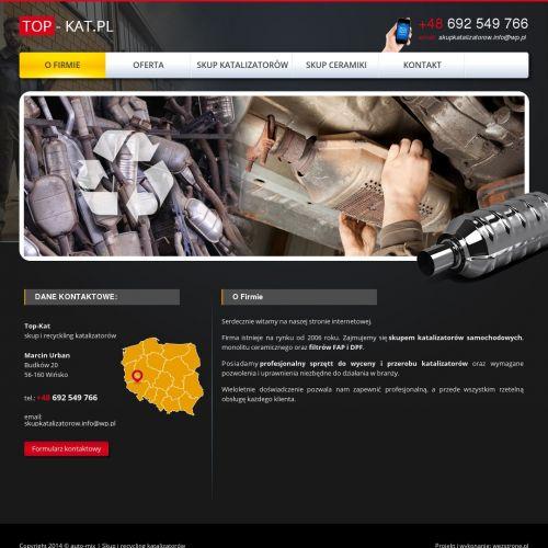 Skup katalizatorów cena w Radomiu